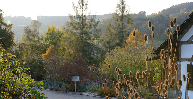 Privater naturgarten selbst geplant und gebaut for Formaler gartenteich anlegen